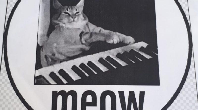 מתכננים מיזם חדש - אנרגיה מתנועת חתולים